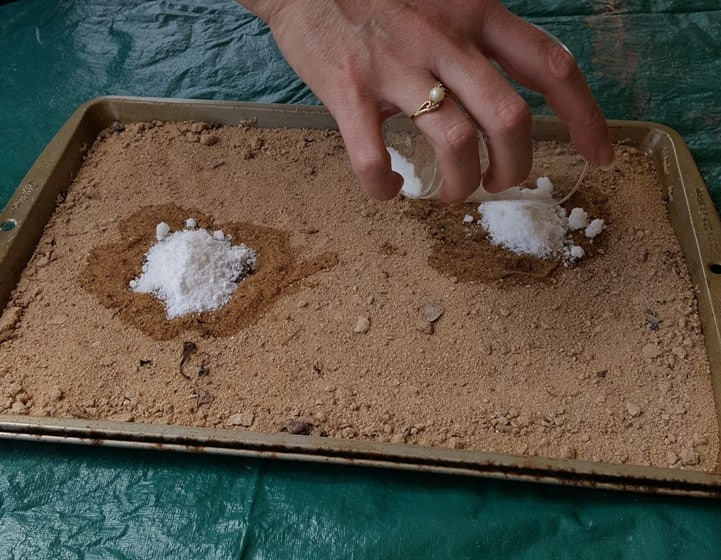 A hand pour white sugar and baking soda onto the wet areas of the sand
