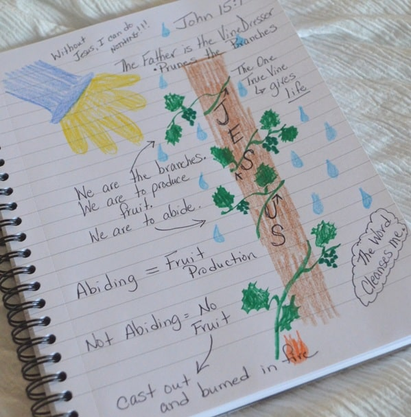 The Vine and the Branches: Family Bible Journaling Project