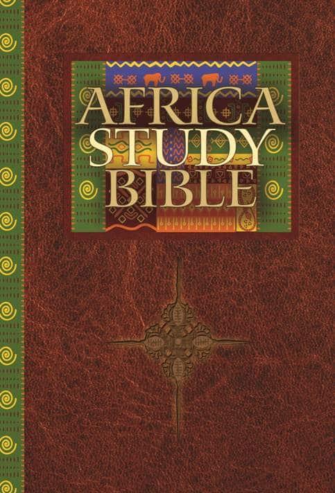 AfricaStudyBibleCoverArt2